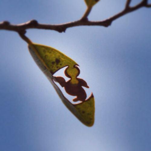 葉っぱ隠れミッキー